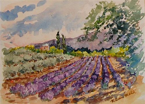 Les Vignobles et Lavender de Provence