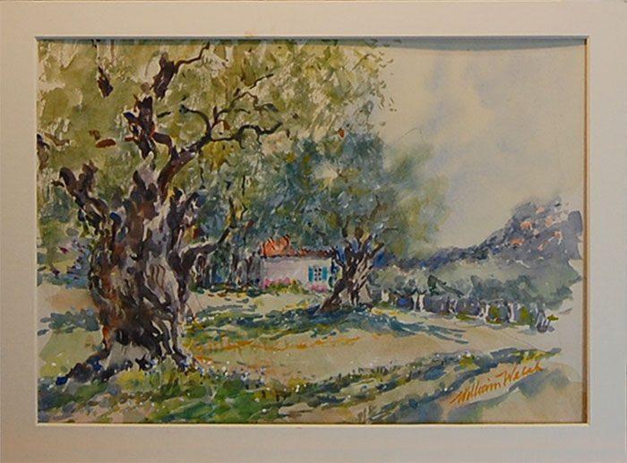Knotty Tree Monet's Garden