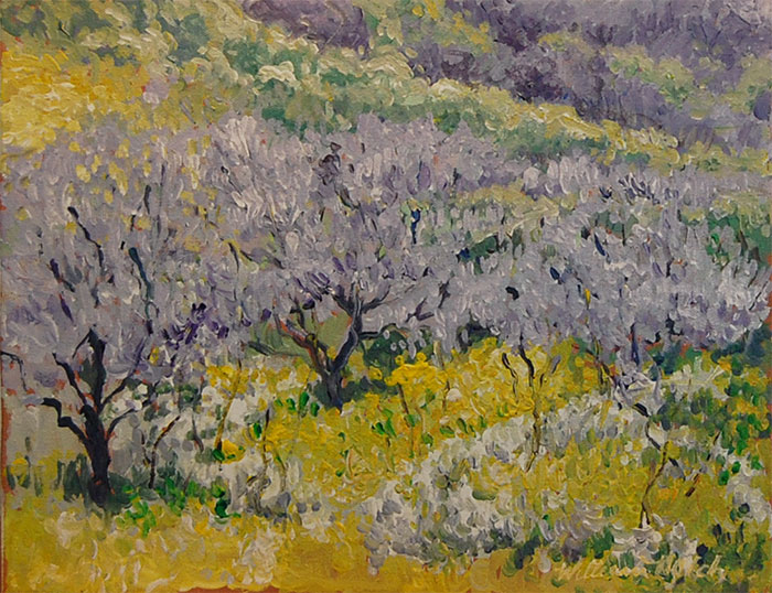 Purple Blossoms on Trees