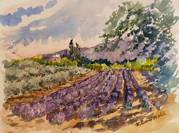 Les Vignobles et Lavender de Provence (Watercolor, 9 1/2 x 12 1/2)