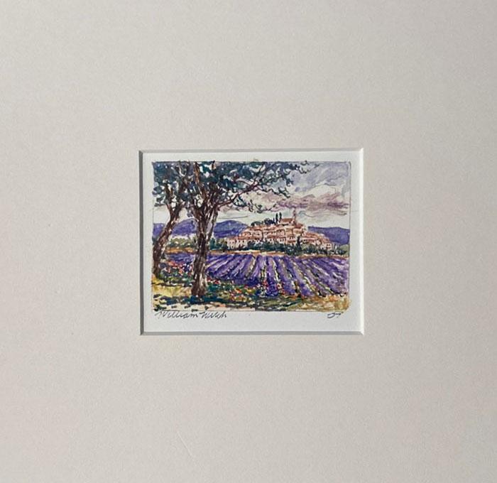Lavender Fields Forever (7.25 x 7.25)